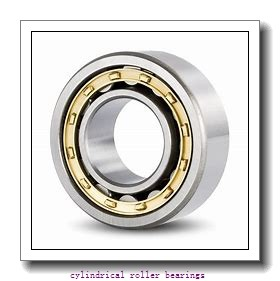 95 mm x 145 mm x 37 mm  NTN NN3019KC1NAP4 cylindrical roller bearings