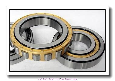 50 mm x 90 mm x 23 mm  NKE NU2210-E-M6 cylindrical roller bearings