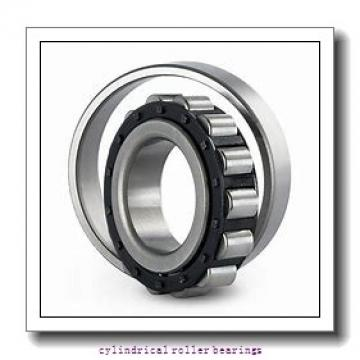 25 mm x 52 mm x 18 mm  ISO NJ2205 cylindrical roller bearings
